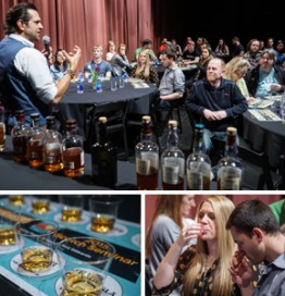 Ari Shapiro, Scotch Expert